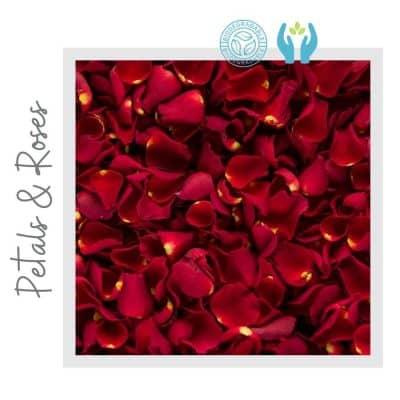 Confeti de Pétalos de Rosa Biodegradable